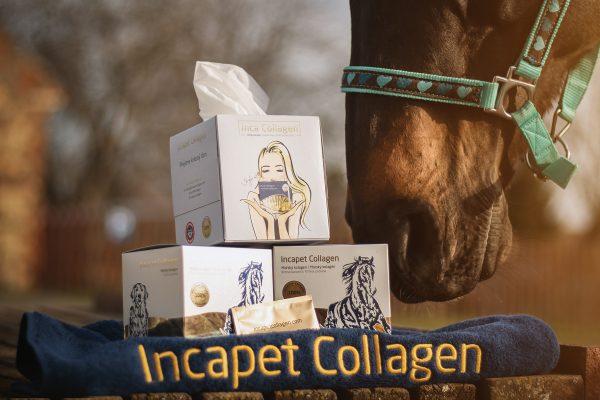 kolagen pre kone