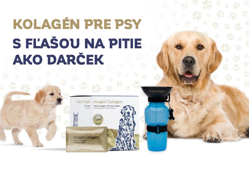Ideálna kĺbová výživa pre psa s darčekom